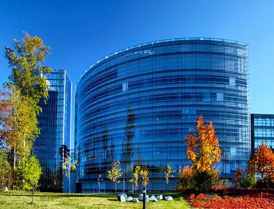 Zege - Blue day in blue office
