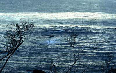 Foxie - Acadia Blue Swirl